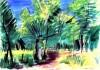 08 Chemin A Travers Les Bois