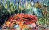 03 Hommage Aux Peintres Fauvistes