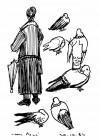 11 Les Pigeons De Paris