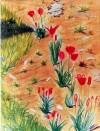 02 Les Tulipes