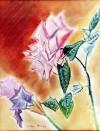 04 Rose
