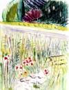 06 Jardin Naturel